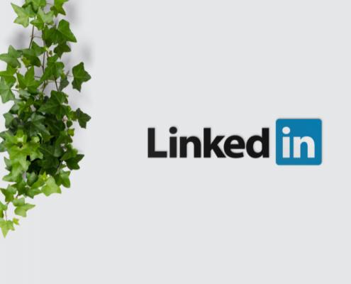Så bygger du målgrupper på LinkedIn
