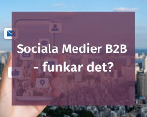 Sociala Medier B2B